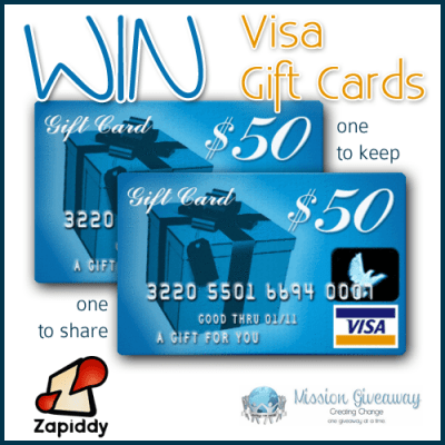 Zapiddy $100 Visa Gift Card Giveaway – Ends 7/26/13  (US)