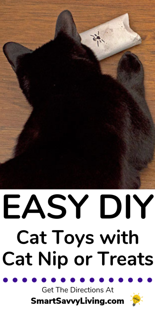 Easy DIY Cat Toys Tutorial