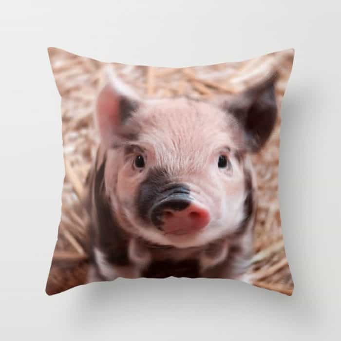 Throw Pillows Perfect For Animal Lovers 11