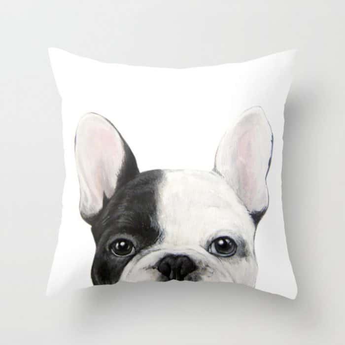 Throw Pillows Perfect For Animal Lovers 5